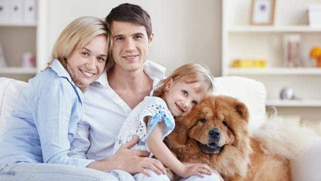 Wills & Trusts dog-young-family Direct Wills Wakefield